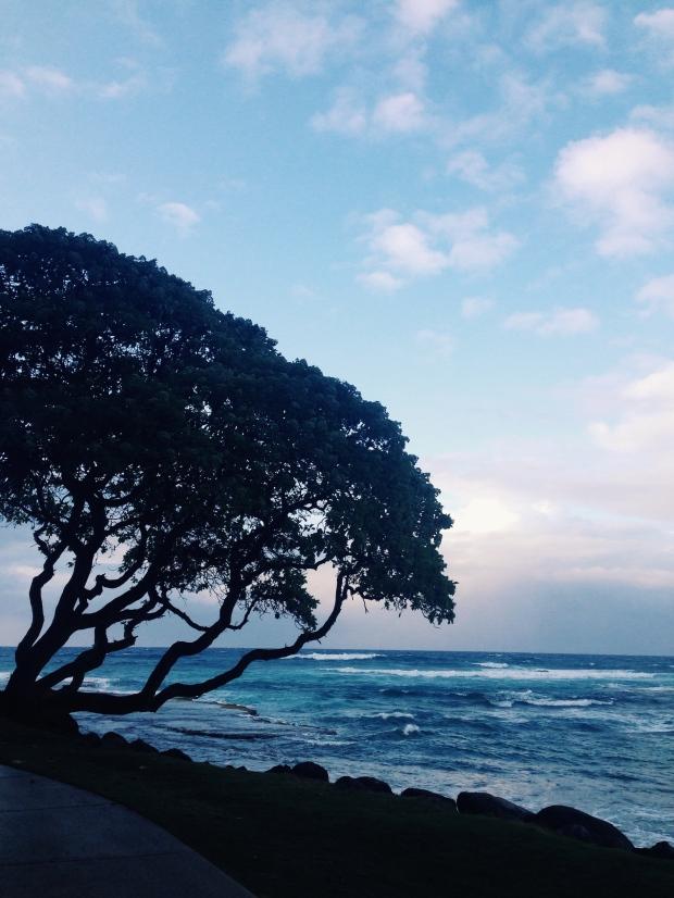 North Shore Oahu Five